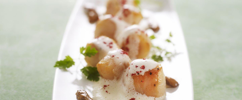 Recette de noix de saint jacques en mulsion d 39 oursin du - Cuisiner noix saint jacques ...